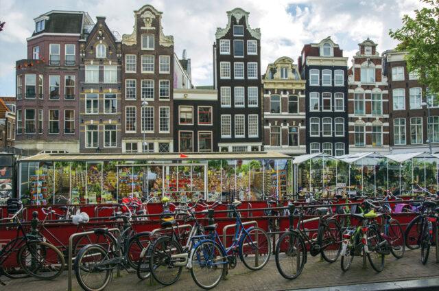 Trh tulipánů, Amsterdam, Holandsko
