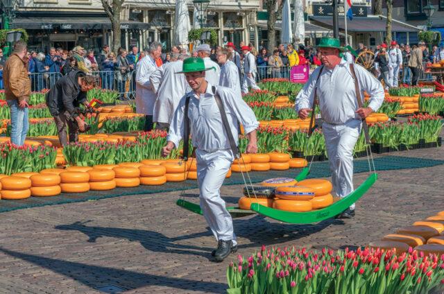 Typický sýrový trh Alkmaar, Holandsko