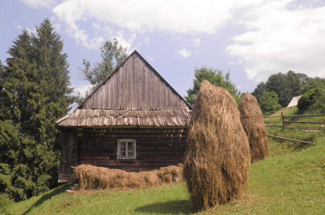Dřevěné roubené domky, Ukrajina