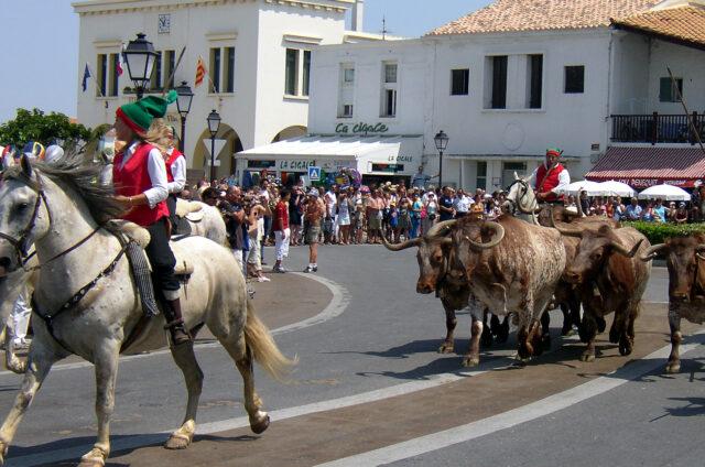 Koně a býci, Saintes Maries de la Mer, Francie