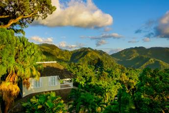 Blue Mountains, Jamajka