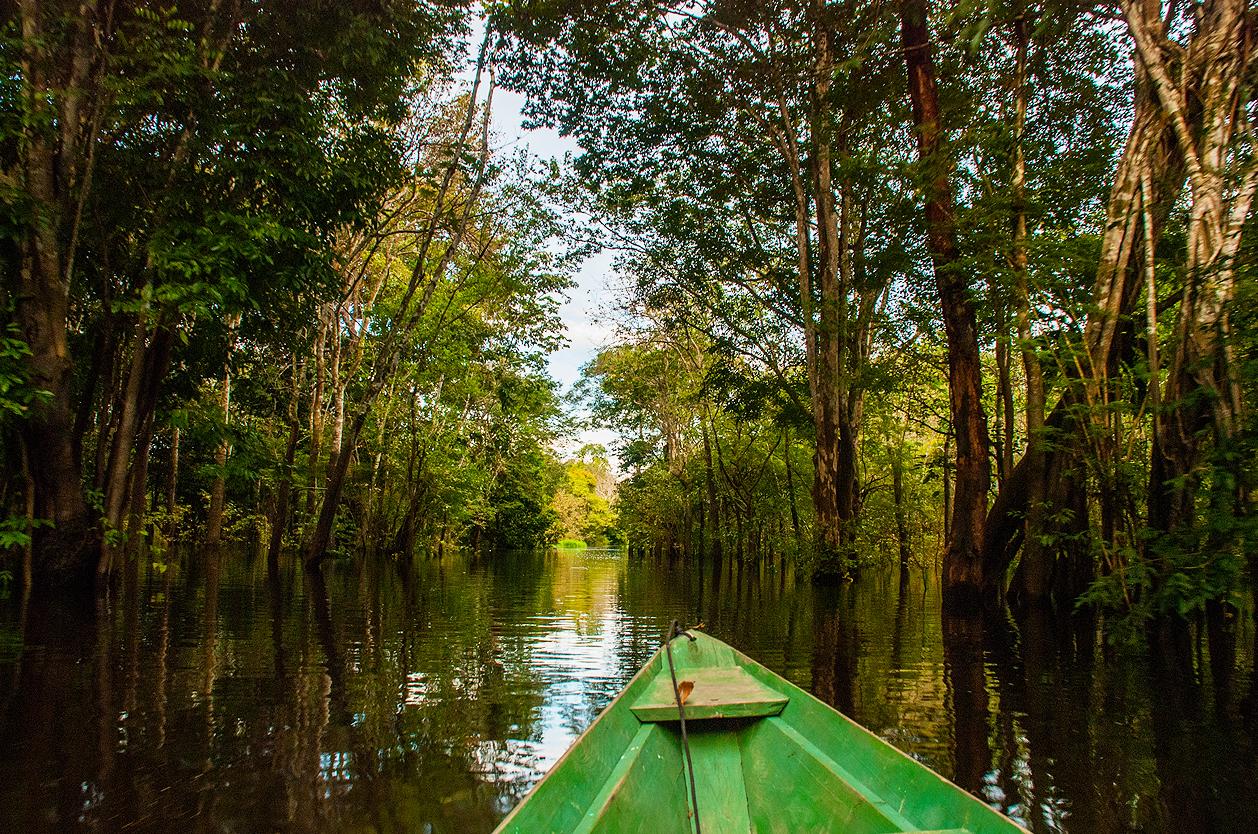 Řeka Amazonka, Manaus, Amazonie, Brazílie