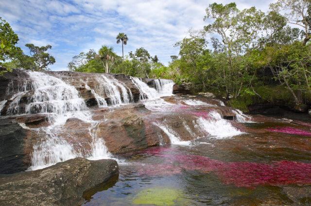 Horská řeka, Caňo Cristales, Kolumbie