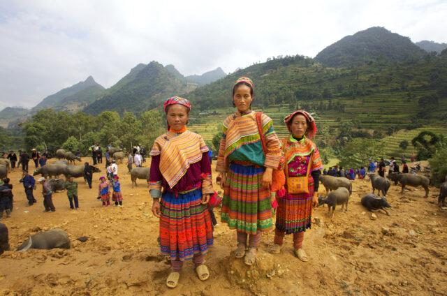 Horský lid Hmong, Vietnam
