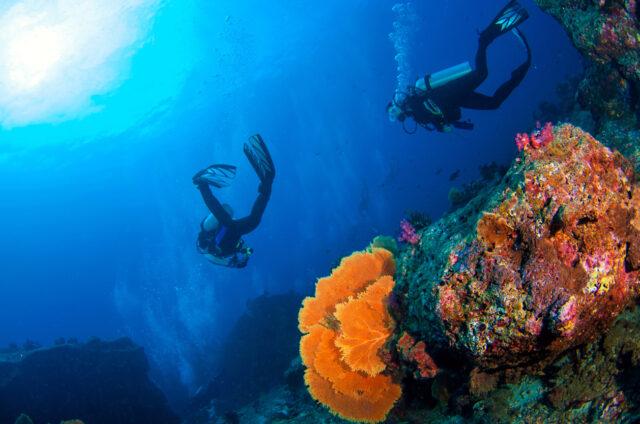 Potápění na Andamanech
