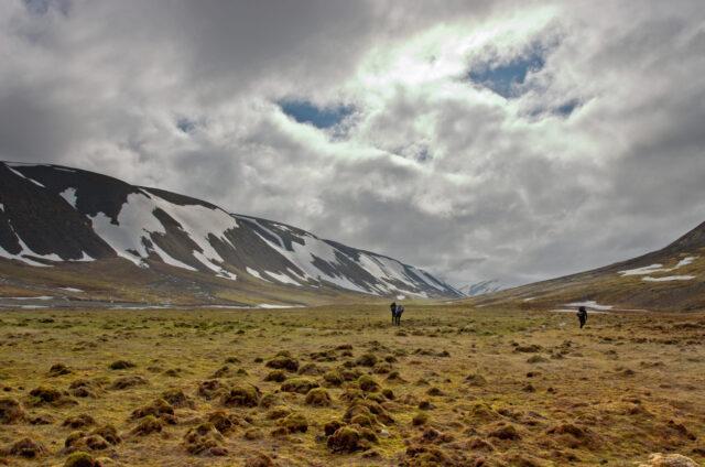 Tundra na souostroví Špicberky