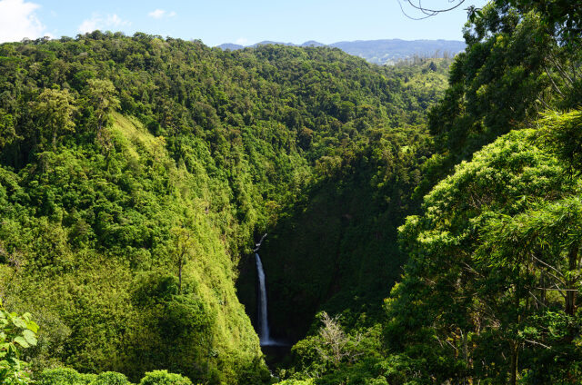 Vodopád v pralese, Kostarika