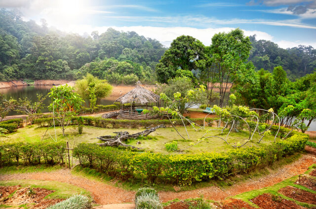 Zahrada v perijárské rezervaci, Kerála, Indie