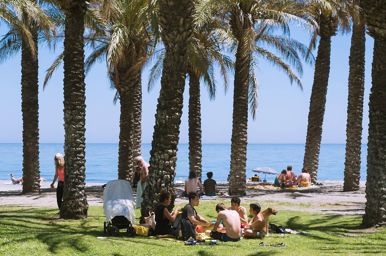 Palmové háje v Torremolinos