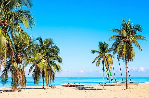 Národní strom a pláž Varadero, Kuba