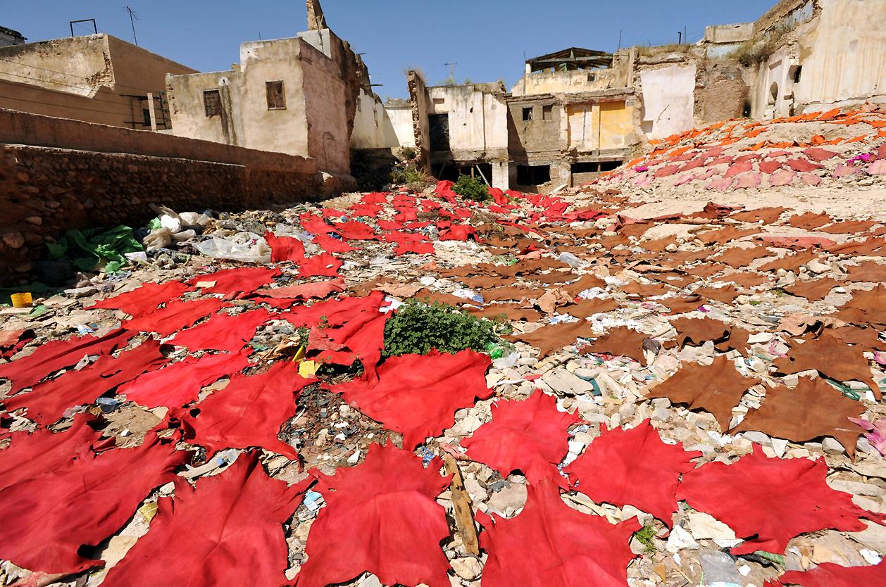 Barvírny kůží, Fés, Maroko