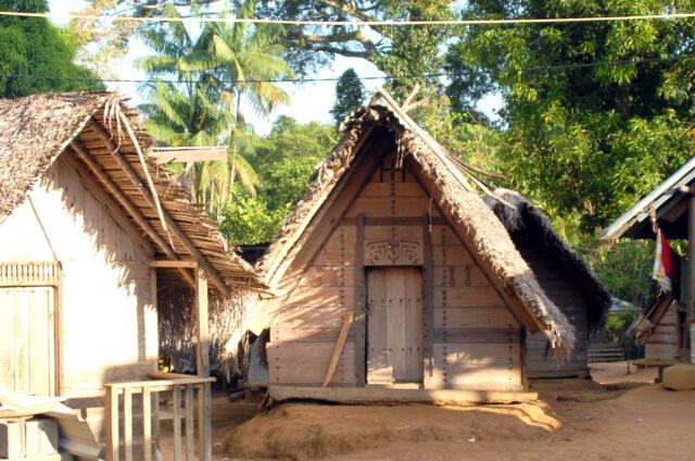 Chatky v N.P., Surinam
