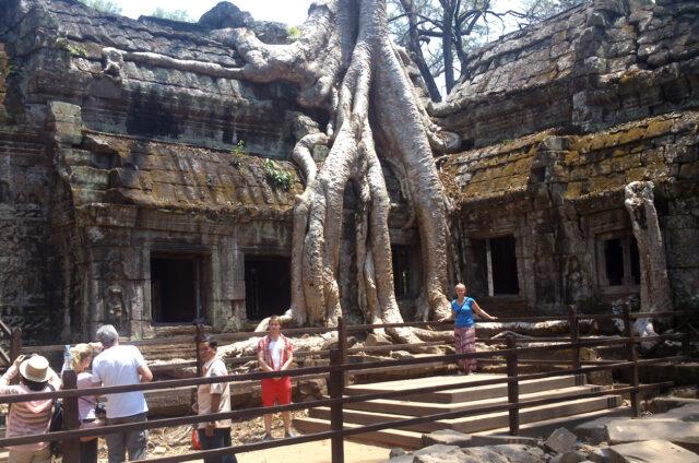 Chrám Ta Prohm, Kambodža