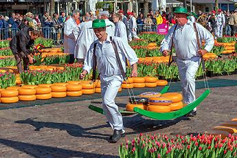 Sýrový trh, Alkmaar, Holandsko