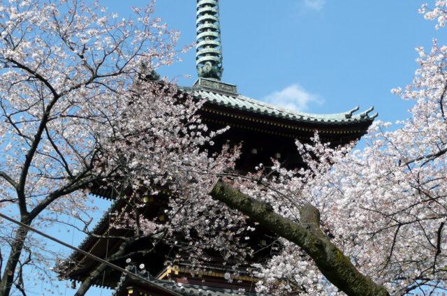 Nara, pagoda chrámu Kófukudži, Japonsko