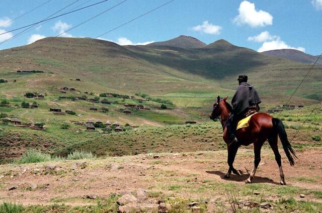 Pastevci, Lesotho