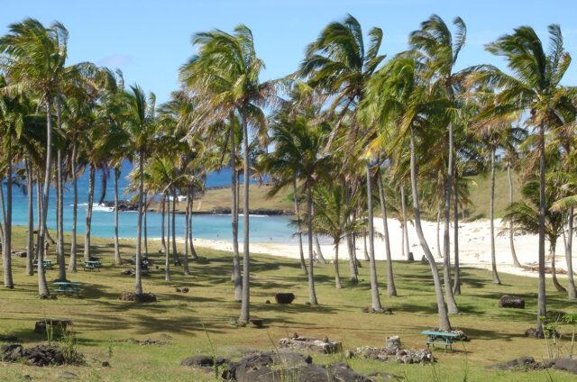 Pláž Anakena, Velikonoční ostrov