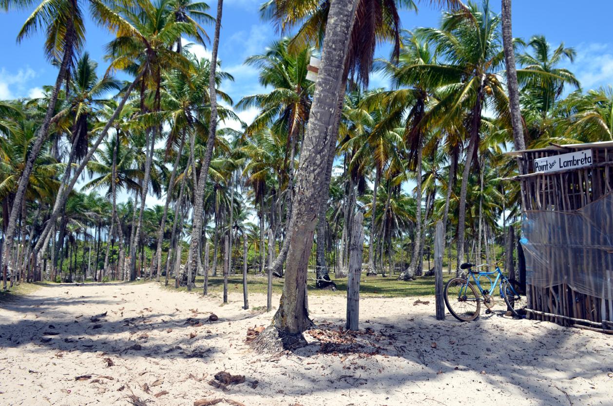 Pláž, Ostrov Boipeba, Brazílie
