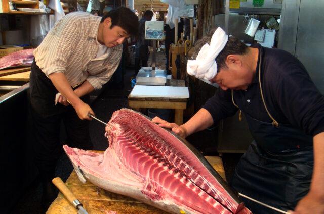 Porcování tuňáka, rybí trhy Tokio, Japonsko