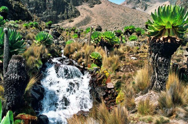 Vodopády na cestě na Mt. Keňa, Keňa.