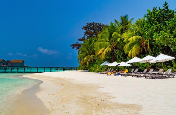 Typická bílá pláž, Maledivy