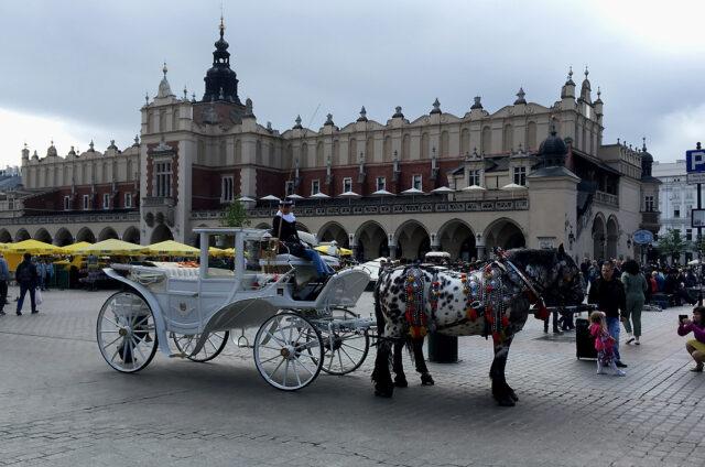 Sukiennice - historická tržnice, Krakov, Polsko