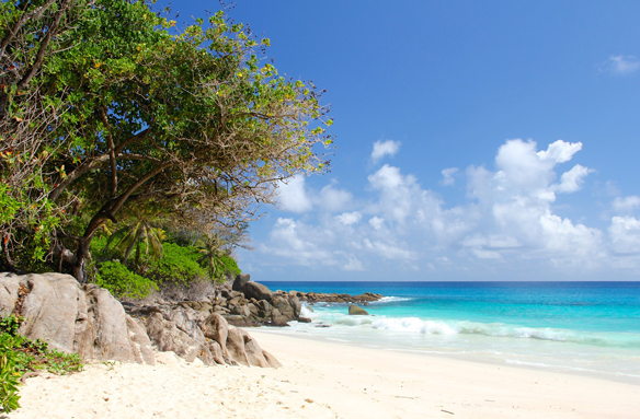 Pohled na zátiší pláže, Seychely